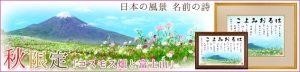 季節限定 コスモス日本の風景